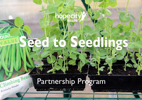 Seedlings partnership program