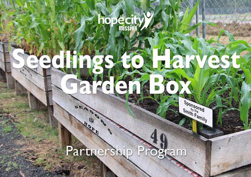 Garden box - community garden