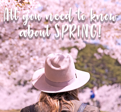 Spring is all about skiing, savings and sakura