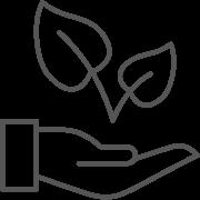 Icon Die richtige Lösung bauen