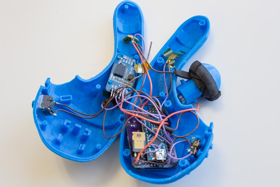 Lioness internal wiring