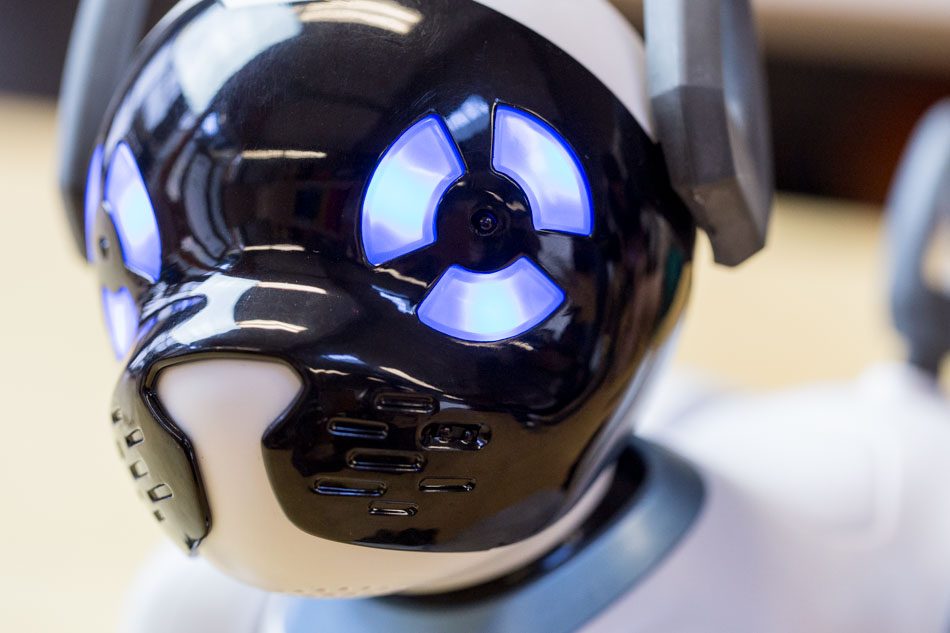 close-up of CHiP the Robot Dog