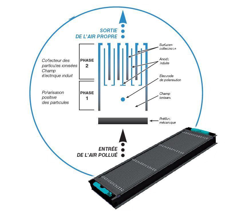 La cassette du purificateur d'air