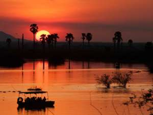 trip201_3_tansania_selous game reserve