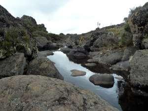 trip200_5_tansania_kilimandscharo