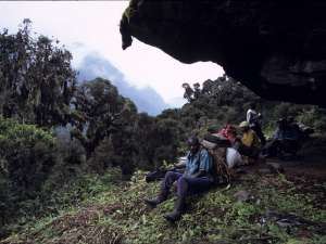 trip198_2_uganda_rwenzori_mountains_nationalpark