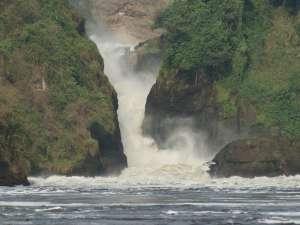 trip196_uganda_4_murchison_falls
