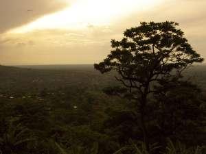 trip195_2_uganda