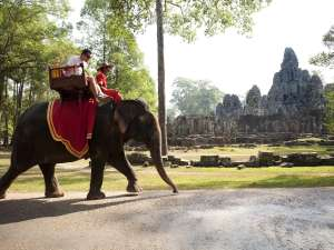trip172_7_kambodscha_elefantenritt