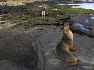trip112_Ecuador_Galapagos_Seeloewe