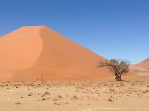 trip312_namibia_sossusvlei