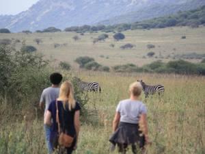 trip368_aethopien_safari