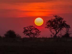 trip311_namibia_botswana_okvango_pb