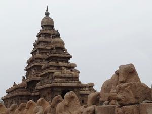 trip325_Indien_MahabalipuramKüstentempel_ia