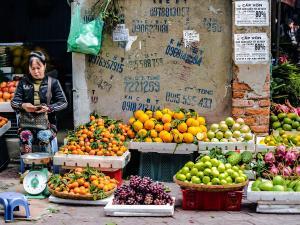 trip352_Vietnam_MarktHanoi_pb