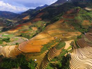 trip352_Vietnam_Sapa_us
