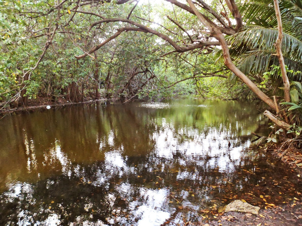 Cuerpo de agua cerca de Laguna Gardens, Carolina, Puerto Rico.