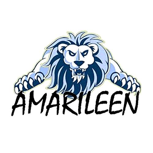 Colegio Amarileen (elemental e intermedio)