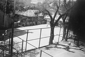 Jensen's Tennis College c.1930. View from Roslyn Gardens where Lakemount apartments now stand.