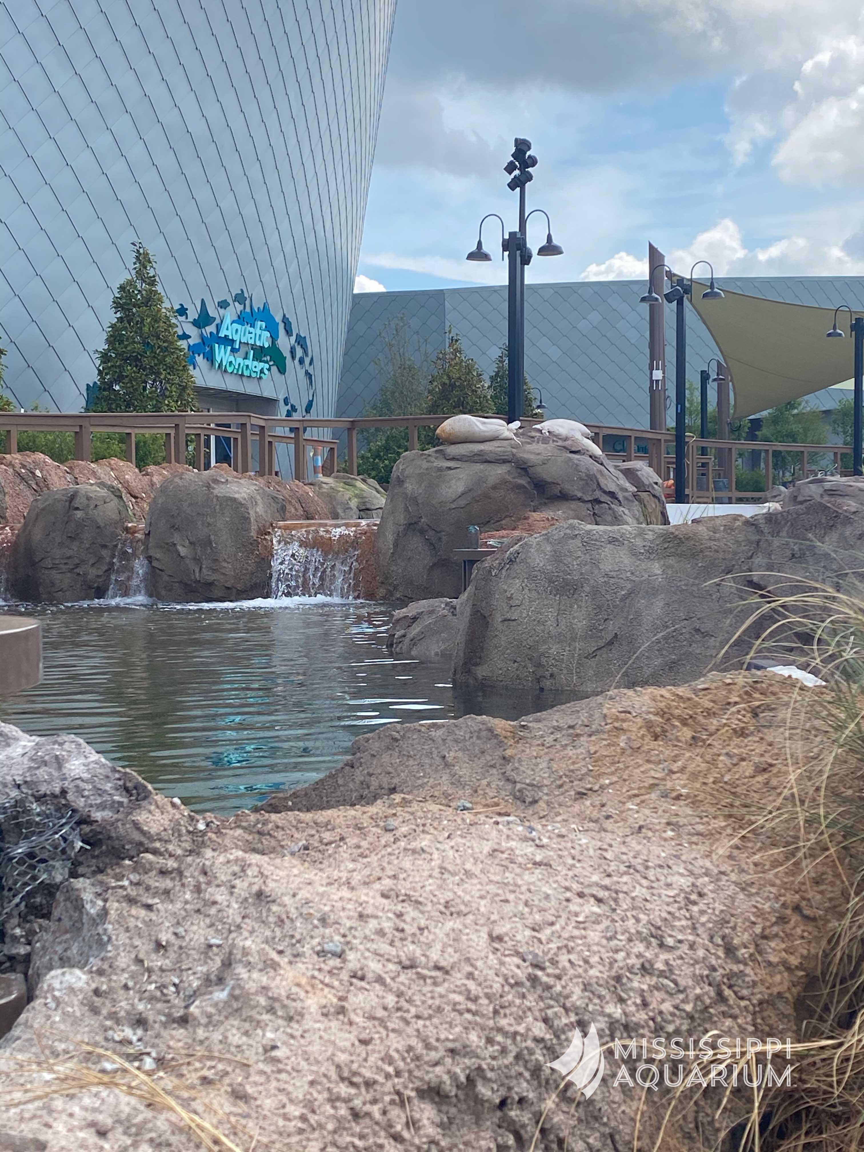 Mississippi Aquarium River
