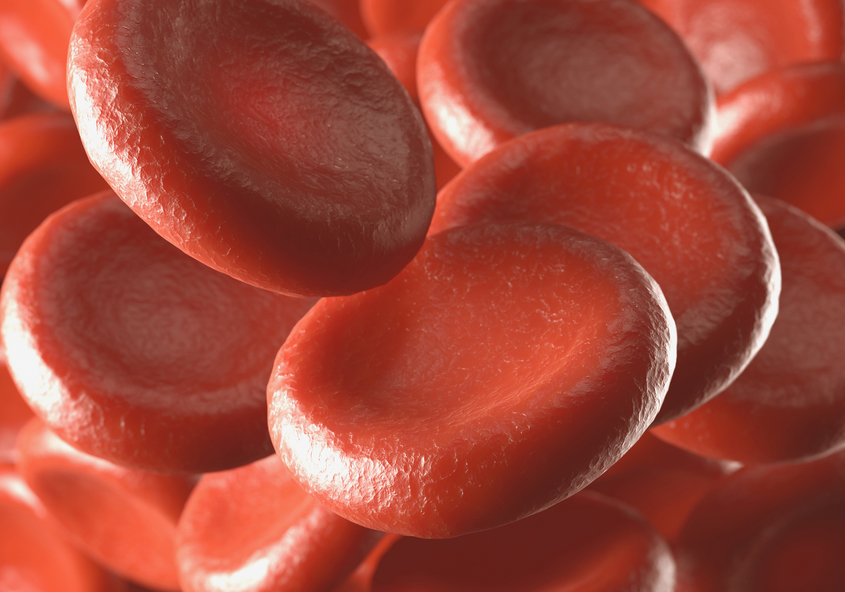 red blood cells, clotting, thrombosis, dialysis