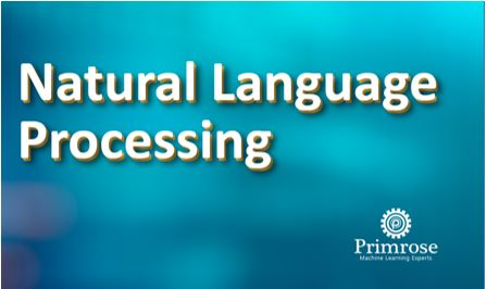 Natural Language Processing Course