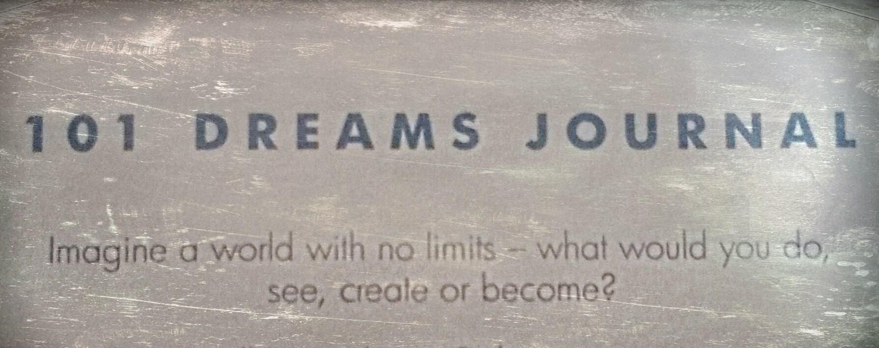 My diabetes dreams journal