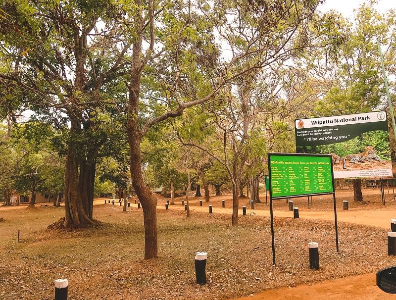 Wilpattu National Park safari