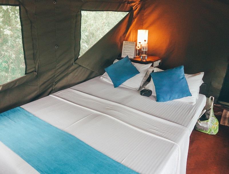 Rooms at Big Game Camp