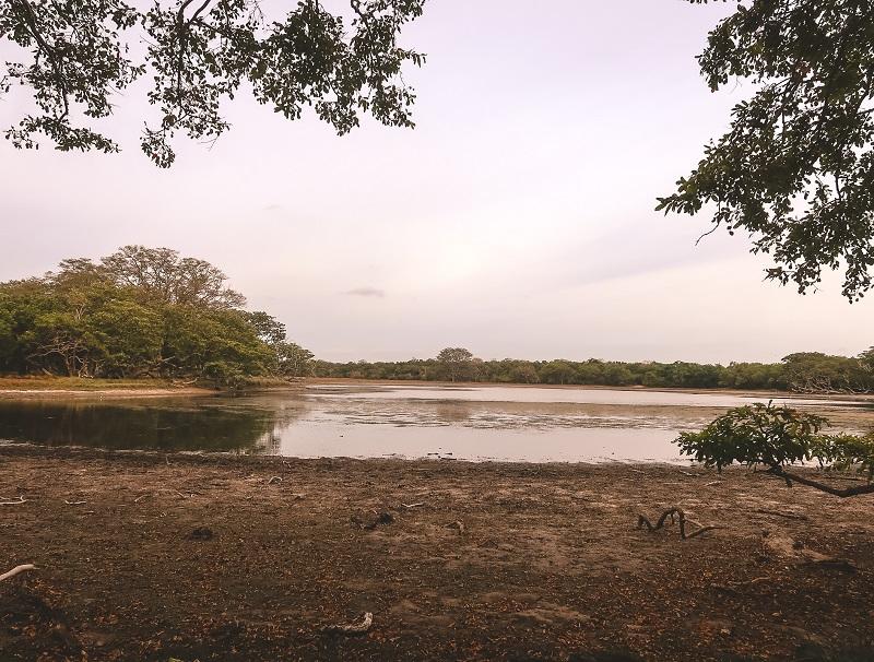 Beautiful Wilpattu National Park
