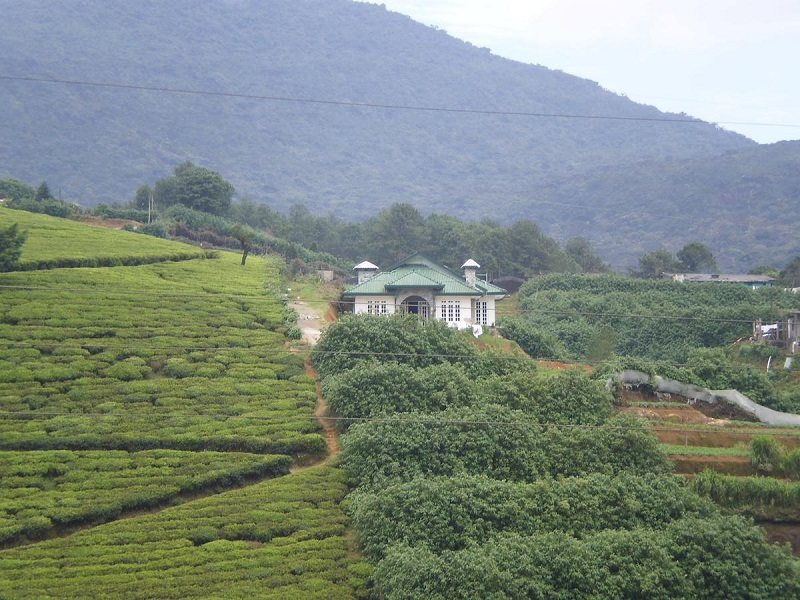 The Royal Terrace Holiday Bungalow, Nuwara Eliya