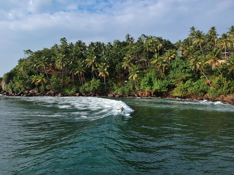 surfing in mirissa