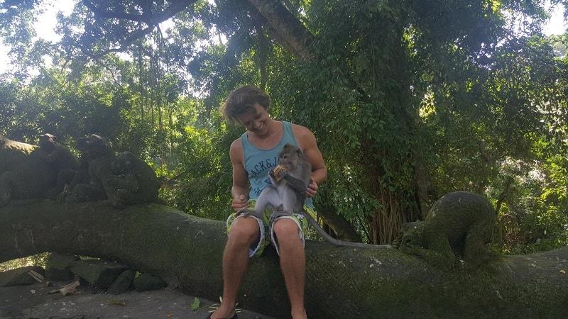 monkey forest temple ubud