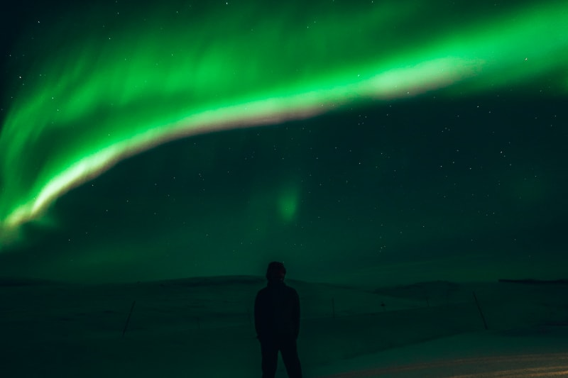 brad at northern lights