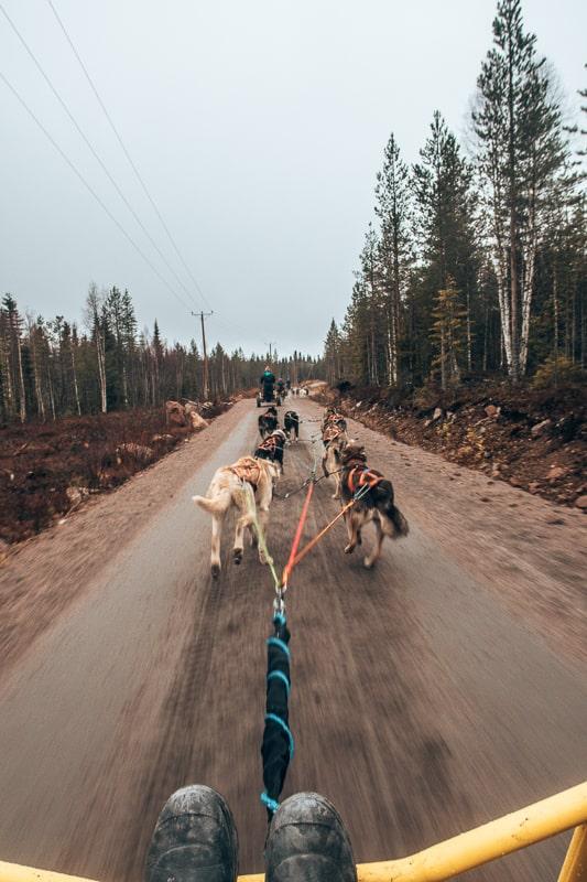 husky ride finland