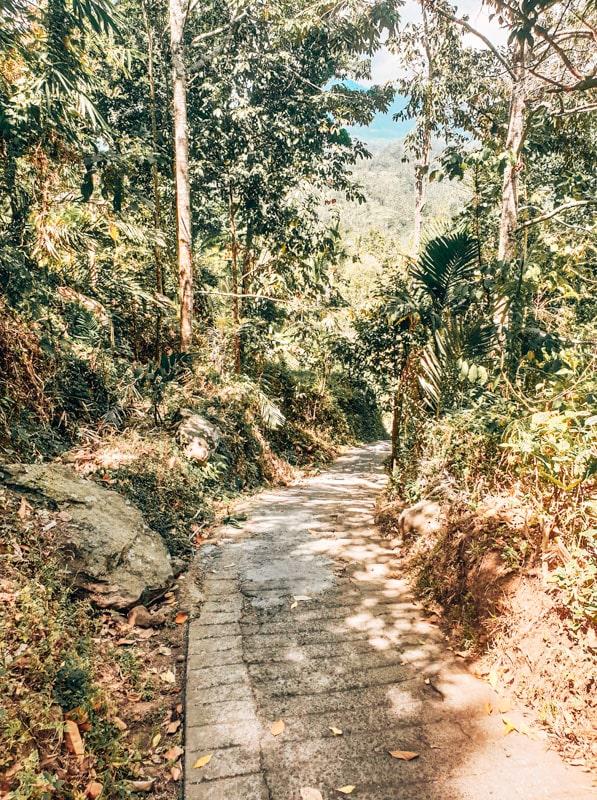 sekumpul road