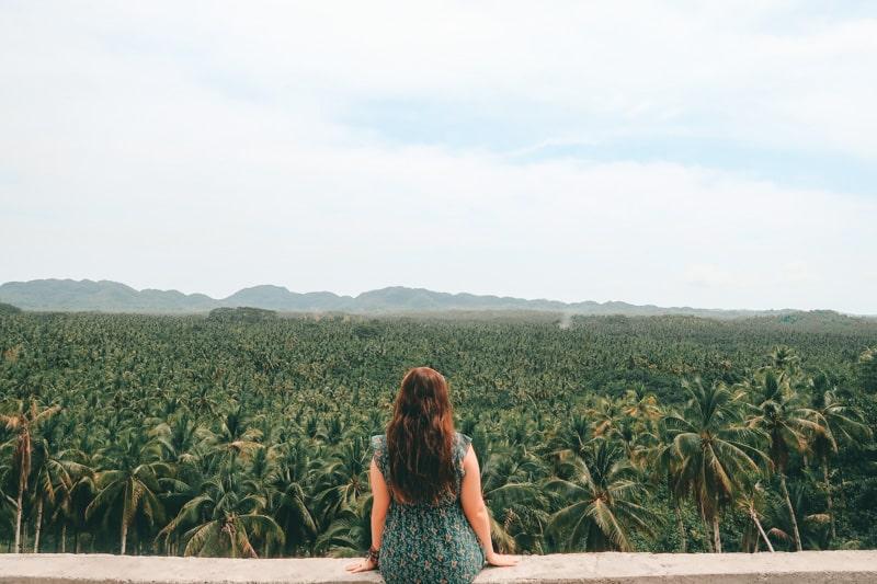 palm trees siargao