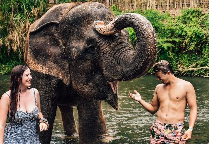 swimsuits and elephants in bali