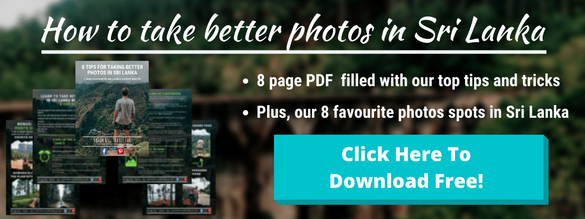 Sri Lanka photo tips banner top