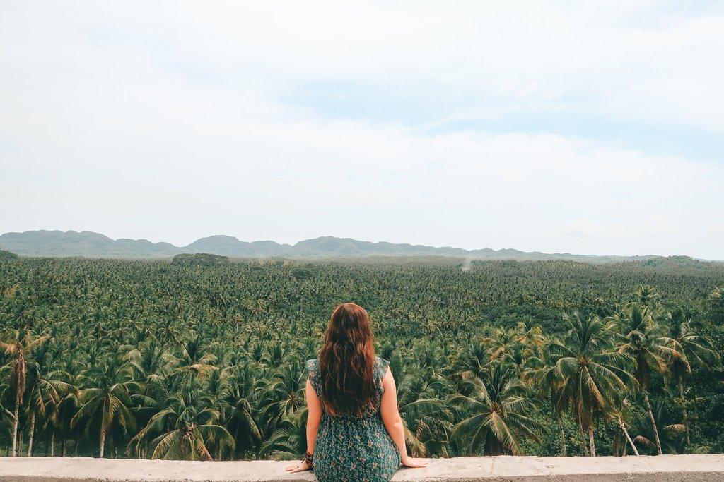 coconuts in siargao