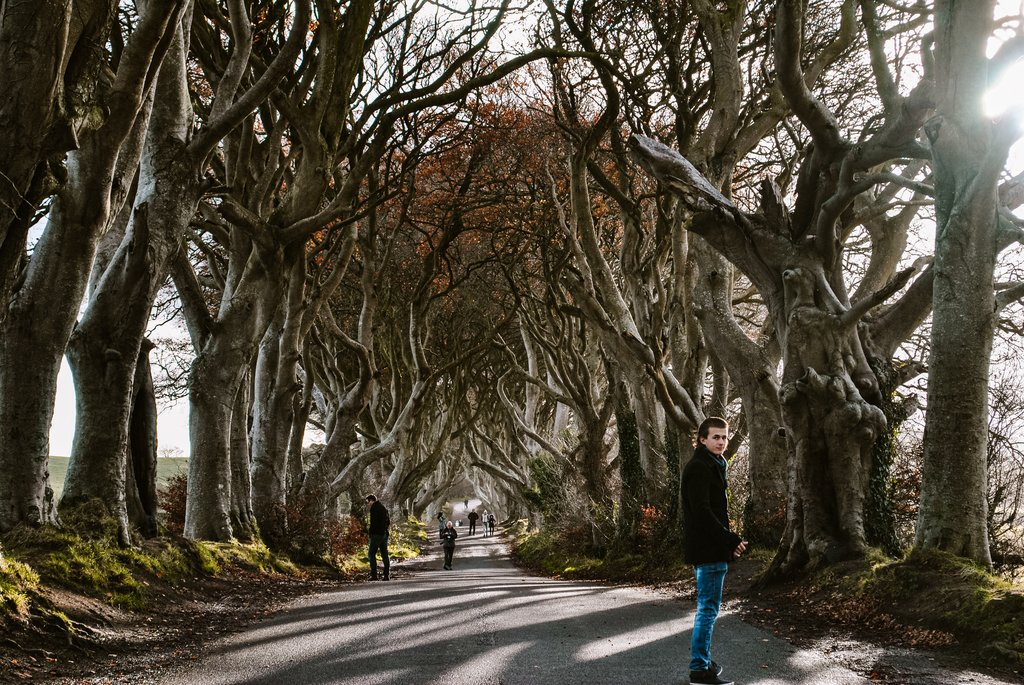 game of thrones, northern ireland