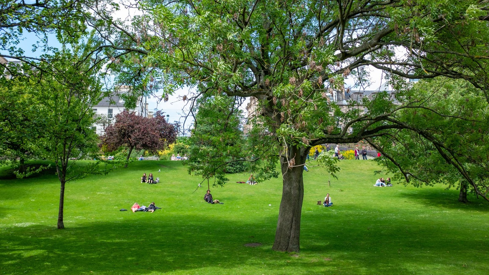 Public parks provide green spaces in urban settings