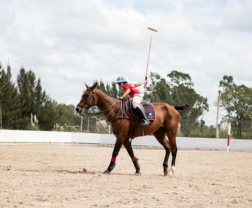 Omnify's horse riding school booking system helped Equestria manage their classes effectively