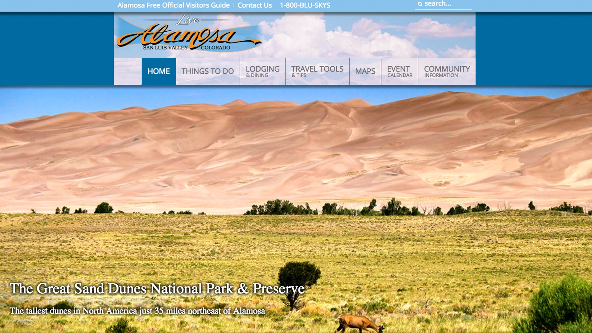 City of Alamosa website