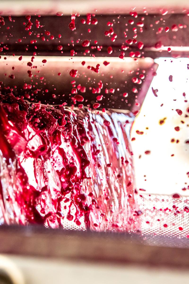 Weinkelterung