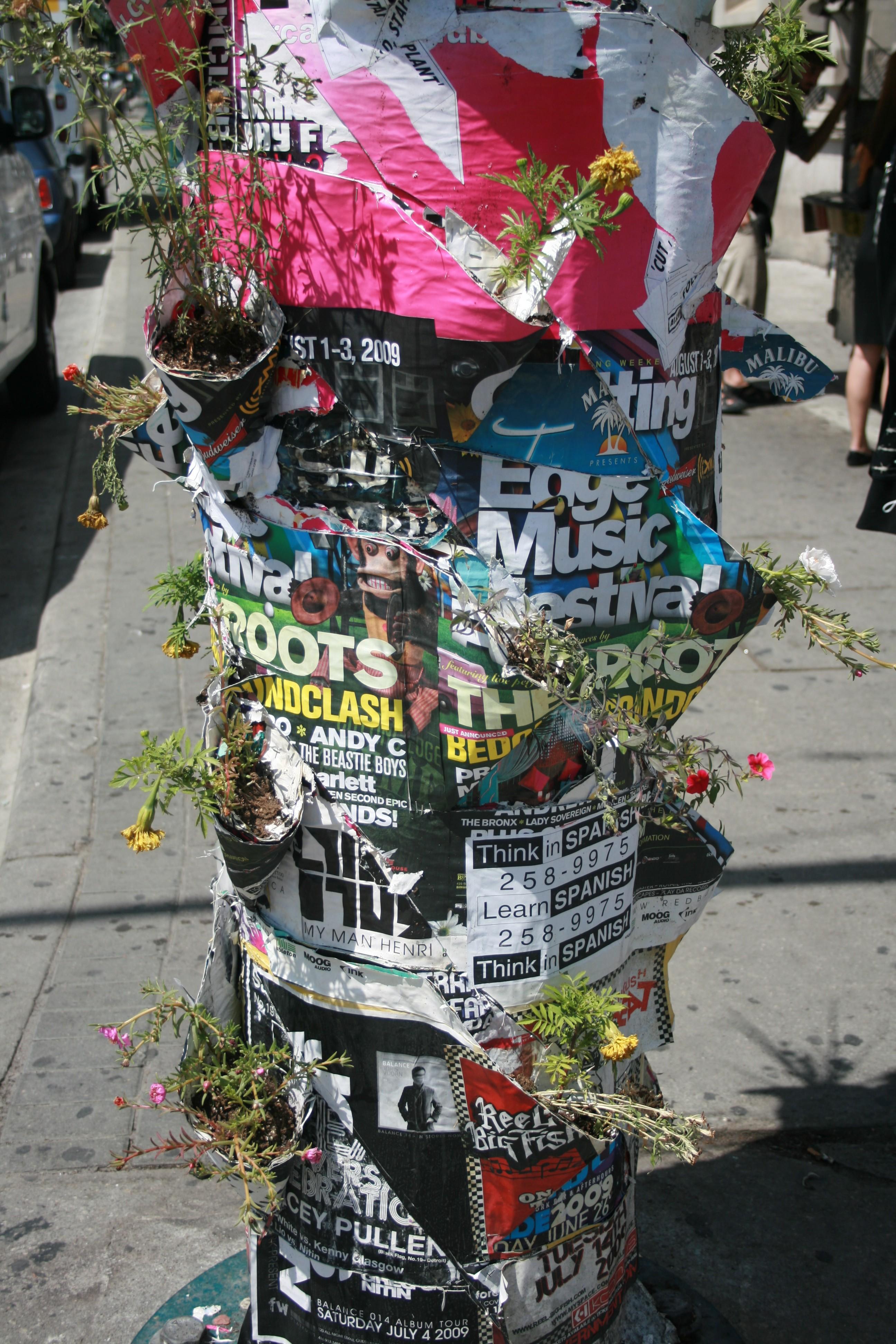 Poster Pocket Plants