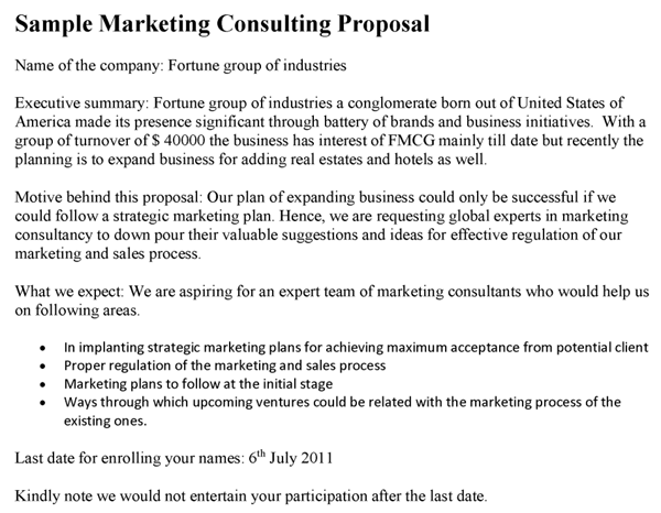 Consultant Proposal Template Example
