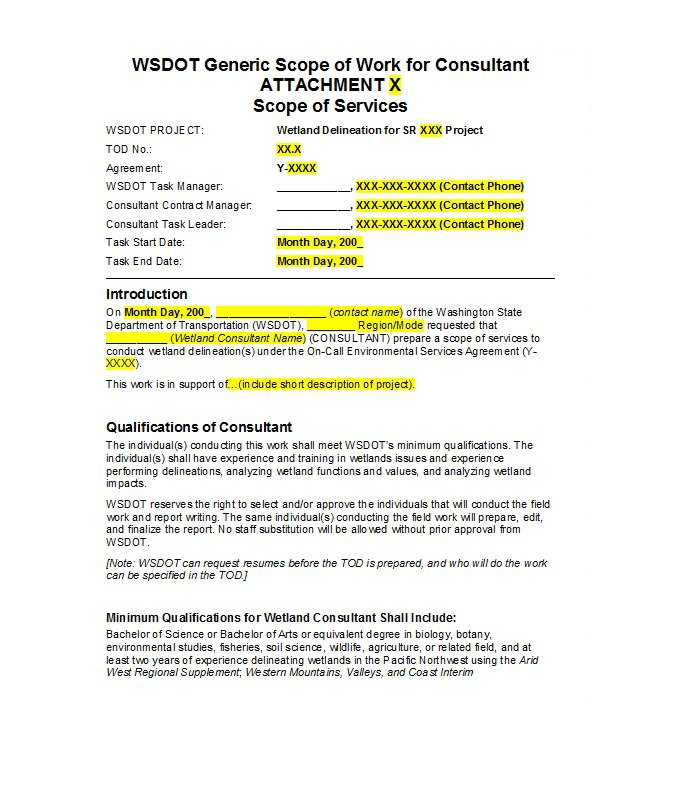 Consultant Statement of Work Template Example