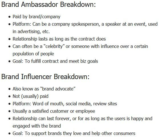 Brand Ambassador Contract Template Example PDF
