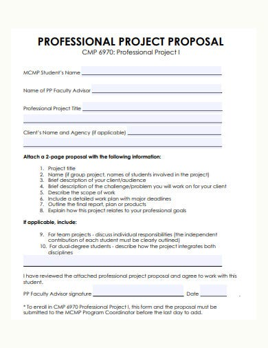 Professional Proposal Template Sample
